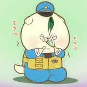 小松菜の日でした