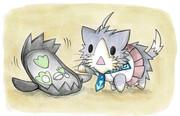 ガラルマッギョと酒匂猫