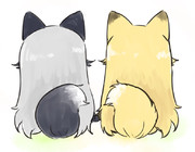 ギンギツネちゃんとキタキツネちゃん