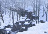 冬の長瀬川