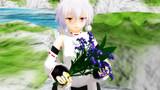 花言葉は『幸福が訪れる』『私を忘れないで』