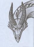ドラゴンを書いてみた