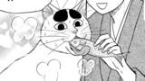 第48話 初鰹と猫