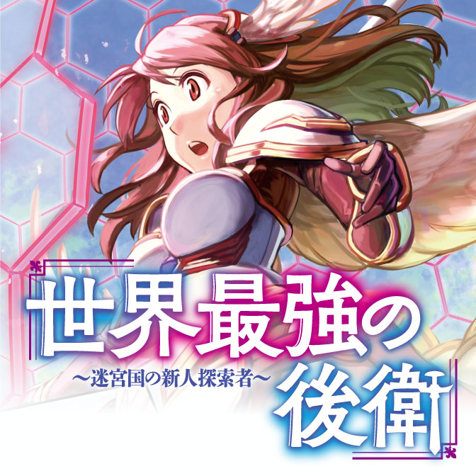 番外編 世界最強の後衛 ~迷宮国の新人探索者~