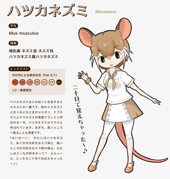 【子年オリフレS】ハツカネズミ(野生)