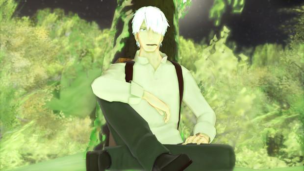 緑の鮮やかな森