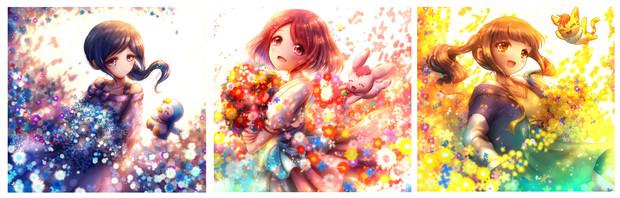 『Fleurs, eau et lumière』