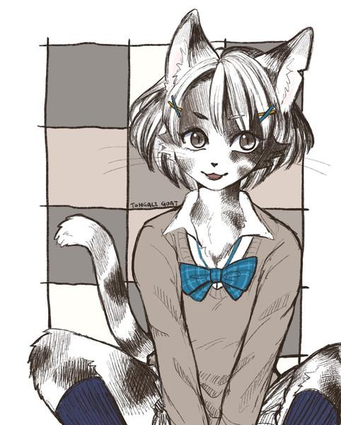 白黒猫JKさん
