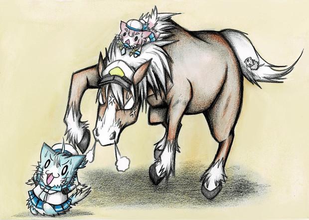 佐渡猫を追いかけるファイルメー提督