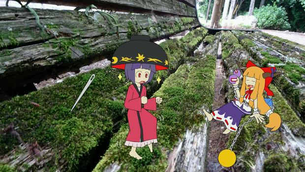 【第12回東方ニコ童祭】苔の絨毯