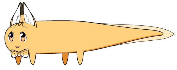 サバンナミンミーイエローウナンヌキャット