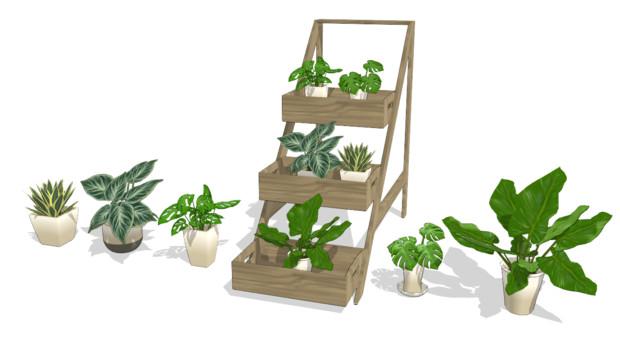 観葉植物セット