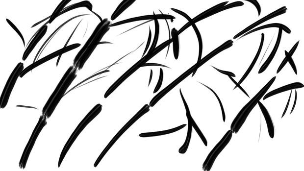 竹…のつもりです