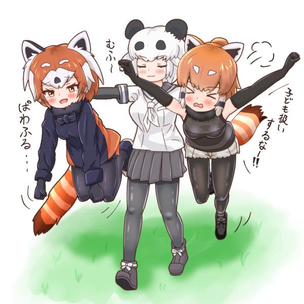 運ばレッサーパンダちゃん