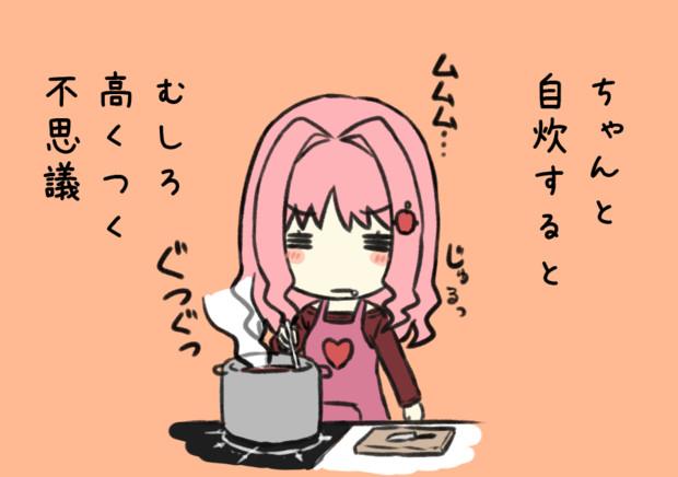 普段使わない調味料とか買い足すと、外食より高く・・・(代理:女子大生ちゃん)