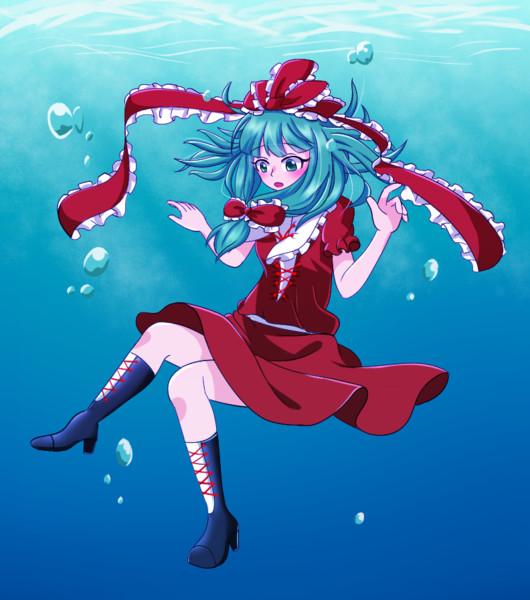 水の中の雛