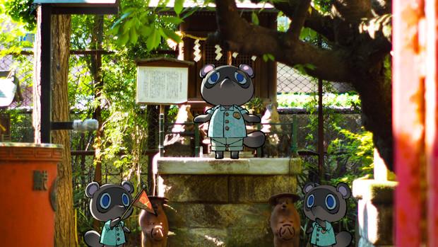 タヌキチと、神社。