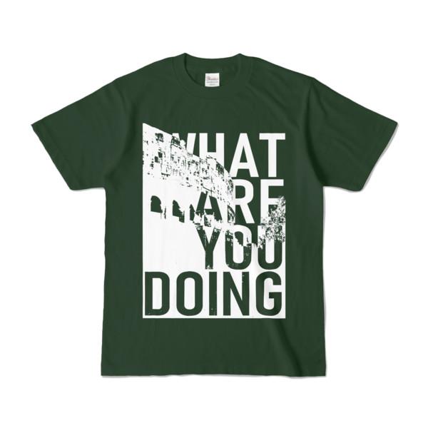 Tシャツ   フォレスト   何してるColosseo
