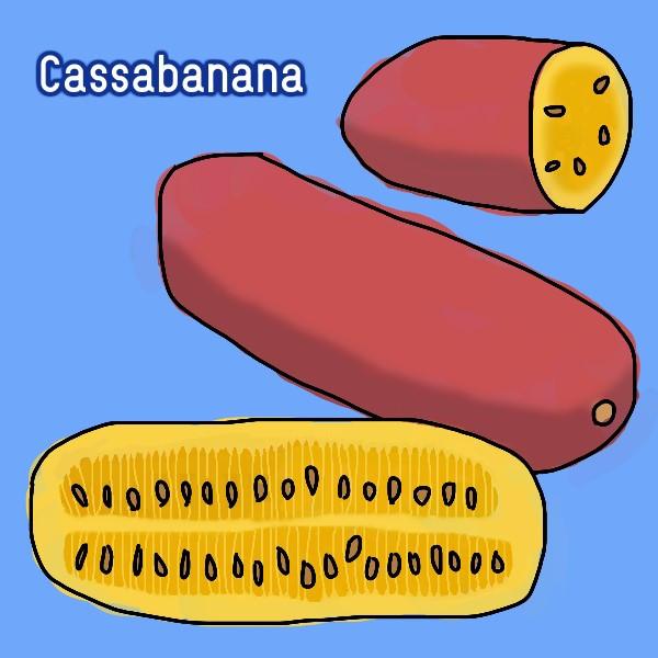 Cassabanana
