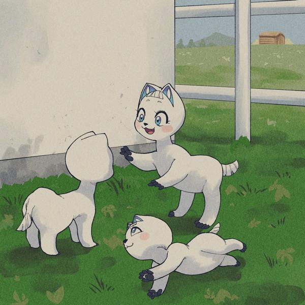 赤ちゃんヨツァーシ