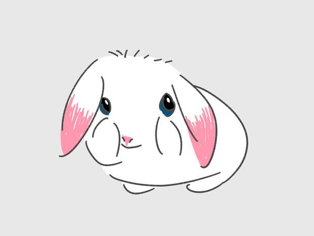 ウサギの洗顔
