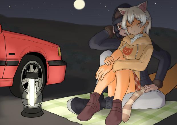キャンプに来たイエネコとゴリラ