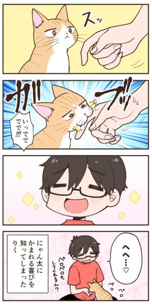 飼い猫に手を噛まれた話