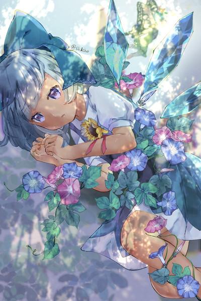 しぼまぬ真夏の花