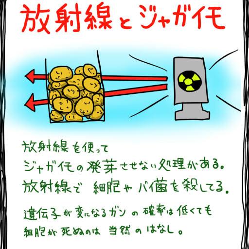 放射線とジャガイモ