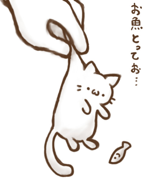 つままれ猫(=^・ω・^=)