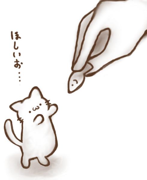 届かない(=^・ω・^=)