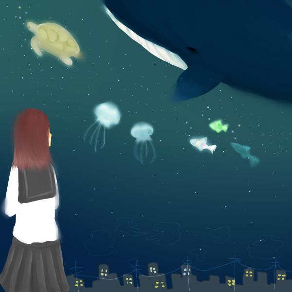 夜間空中水族館