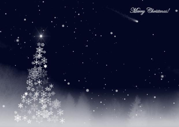 クリスマスカードTypeB