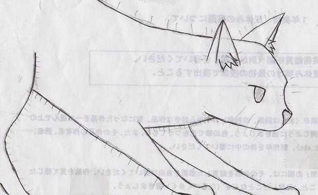 ぬこo(U・ω・)⊃にゃん