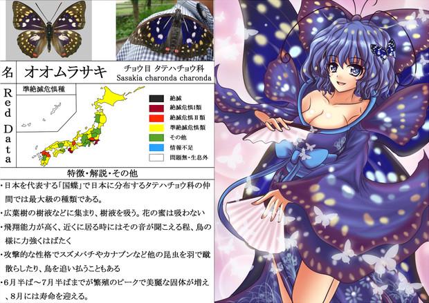 【擬人化】 オオムラサキ 【絶滅危惧種】