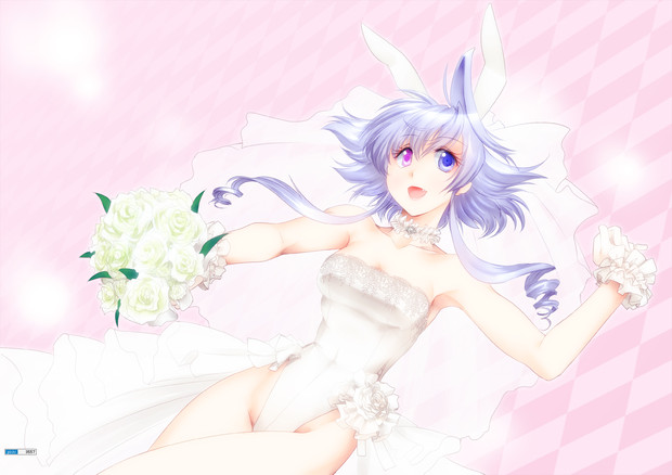 WeddingBunny