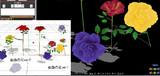 mmd薔薇の花