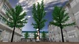 【MMD】樹木モデル配布【3500頂点/本程度】