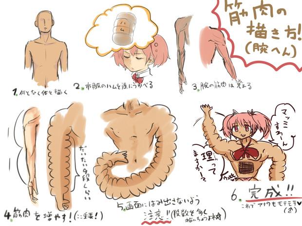 筋肉の描き方メイキングハム腕編 クラミジア大統領 さんのイラスト