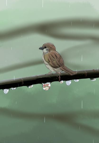 とある雨の日