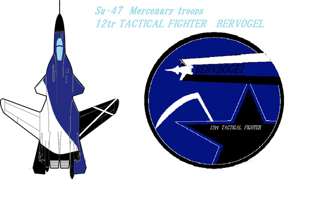 BERVBOGEL隊 機体塗装