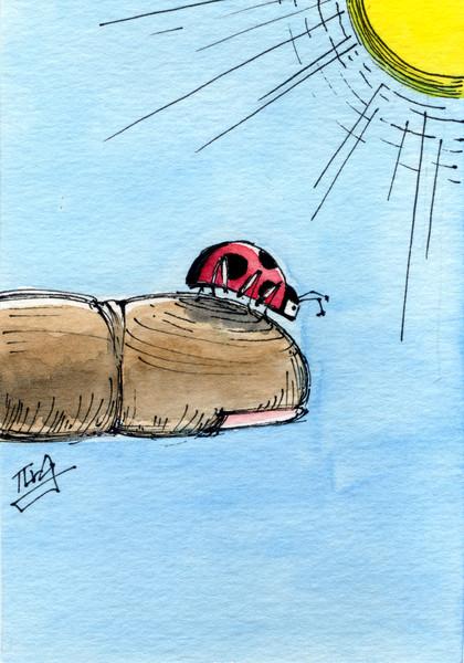 天道虫「行き止まり」
