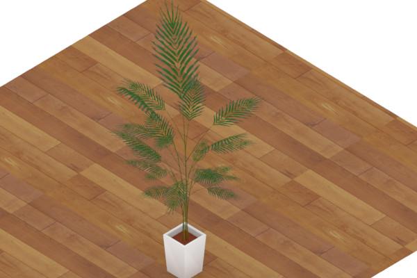【3Dモデル】観葉植物(アレカヤシ)【配布あり】