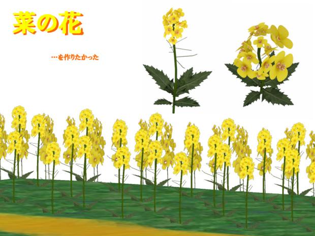 【MMDモデル】菜の花【配布あり】