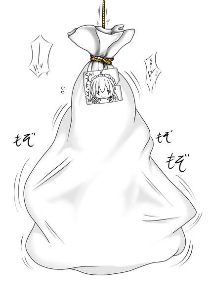 本日のプレゼント (咲夜さんの袋詰め)