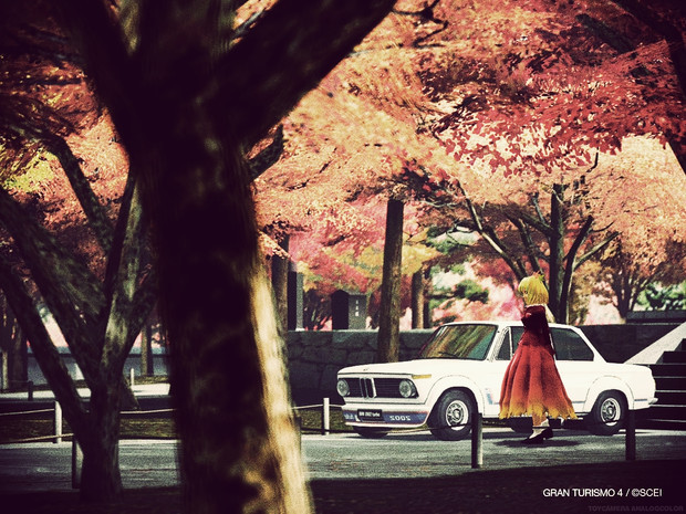 もう秋やのう…