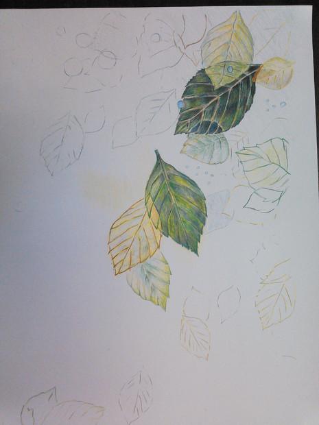 塗り絵 途中です。葉っぱ。