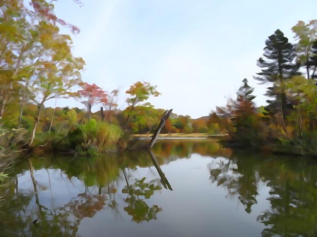 大沼の紅葉 水面反射
