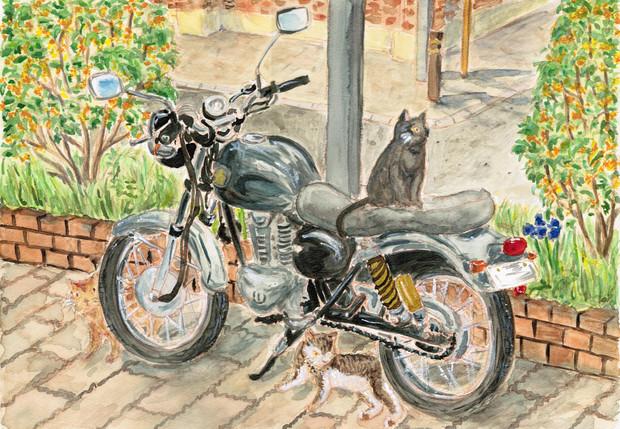 猫とエストレヤ(色つき)