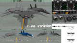 F-15E & 各種バリエーション